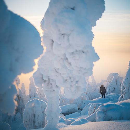 Hiihtokeskus Iso-Syöte on paras paikka lapsiperheille. Tykkylumipuut kaunistavat tunturin maisemaa. Lumivarma alue on paras paikka lasketella, lumilautailla tai telemark hiihtää. Murtomaahiihto ladut ovat hyvin hoidettuja.