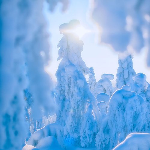 Musti ja Lysti seikkailevat Seikkailumetsässä. Lumimaa on lapsiperheille paras paikka. Hiihtokeskus on turvallinen. Hiihtoloma menee nopeasti suksilla ja lumilaudalla.